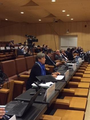 Margret Kiener Nellen an der Parlamentarischer Versammlung der OSZE in Andorra